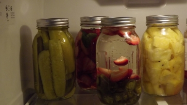 stick the jars in the fridge and wait! be sure to shake them once a day and give them a little taste after 3-4 days; it can take up to a week to get a good flavor for certain varieties but I'm told the jalapenos will only need 4 days to do their thing