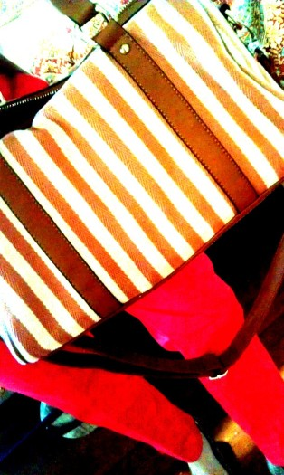 striped bag from spotted moth